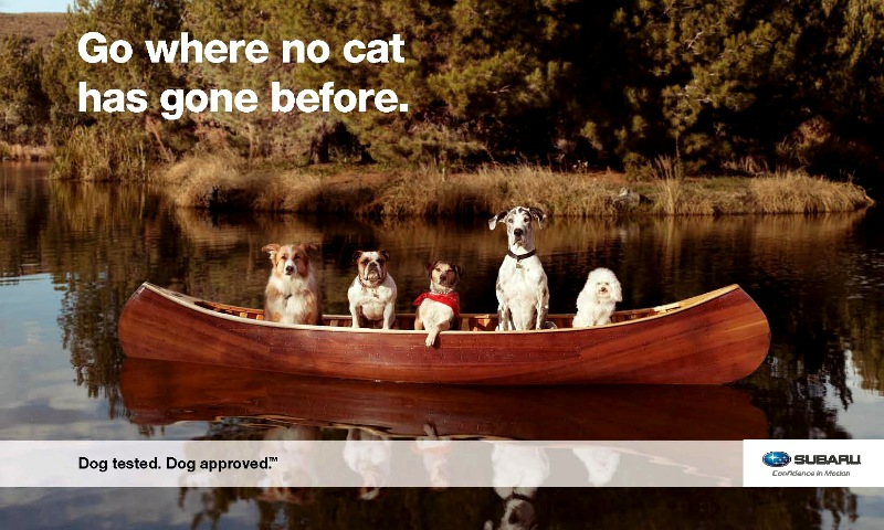 % Dogs in a Trapper canoe. Ferom Suburu advertising campaign